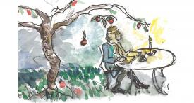 Newton et la pomme