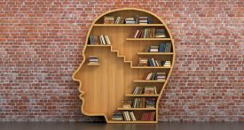 Bibliothèque sur mur de brique